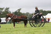 reeth show 2009 - private driving