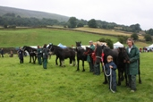 Reeth Show 2009 - Pony judging