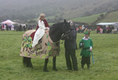 reeth show 2009 - mounted fancy dress