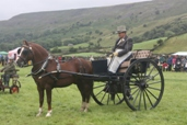 Reeth Show 2009 - Driving