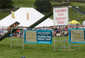 Reeth Show 2010 - Main attraction