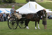 Reeth Show 2010 - Private Driving