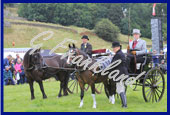 Reeth Show 2014